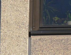 natürlicher Nistplatz Fensterbank (Ingo)