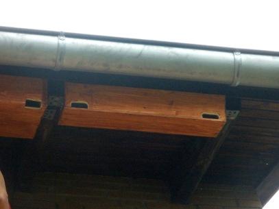 Nistkasten selbstgebaut zwischen Dachsparren